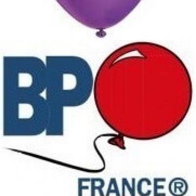Ballon opaque violet 25cm (x10) REF/35588