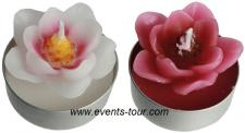 Bougie chauffe-plat magnolia fuchsia (x4) REF/144144