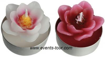 Bougie chauffe-plat magnolia (x4) REF/144144