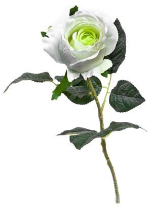 Bouton de rose blanche 55cm