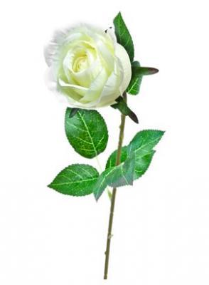 Bouton de rose blanche, 60cm (x1) REF/FTG2012