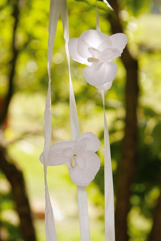 Branche d orchidee blanche pour decoration