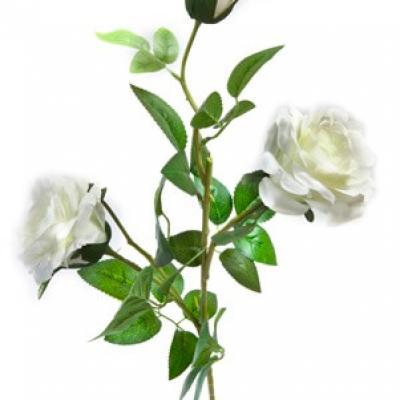 Branche de rose blanche, 75cm (x1) REF/FTG2001
