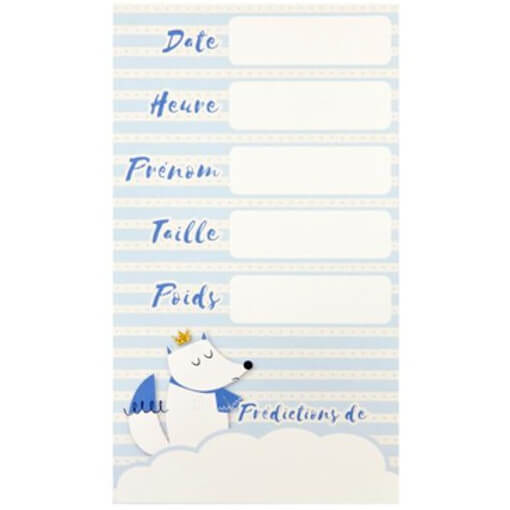 Carte de predictions baby shower bleu ciel