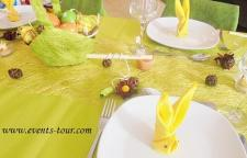 Decoration de table champetre