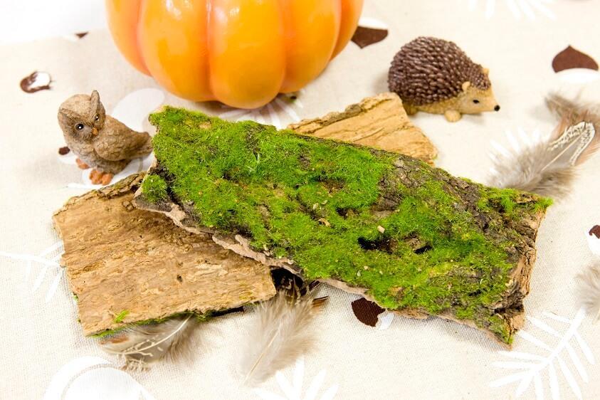 Decoration de table mousse verte et ecorce