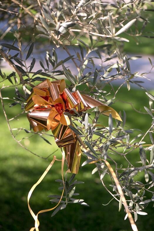 Decoration exterieur mariage noeud automatique rose gold en 30mm
