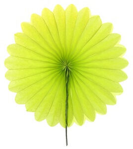 Eventail 20cm vert