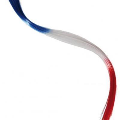 Extensions pour cheveux tricolores France (x1) REF/00/1004