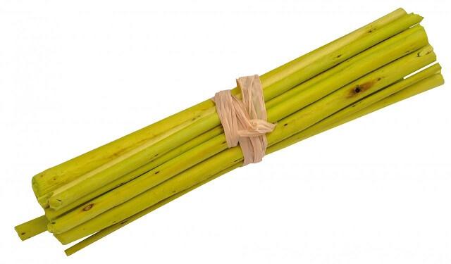Fagot en bois vert 1
