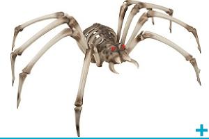 Fete halloween avec theme sur squelette