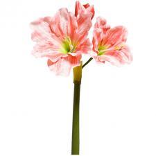 Fleur Amarylis saumon 72.5cm (x1) REF/FTG2057