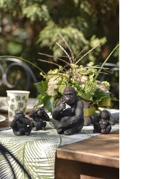 Gorille bebe