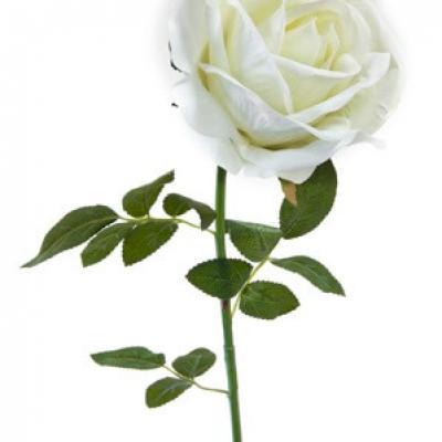 Grande rose velours blanche, 85cm (x1) REF/FTG2030