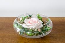 Location d'un vase élégant coupe en verre de 20cm pour décoration de table. (x1) REF/EV-328