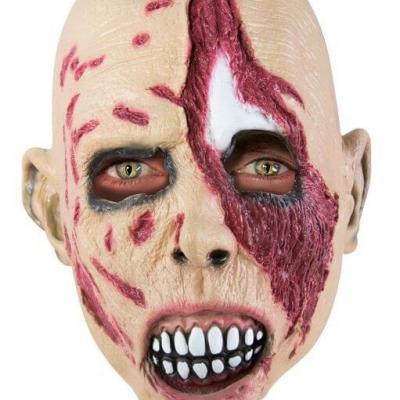 Masque adulte zombie (x1) REF/41766