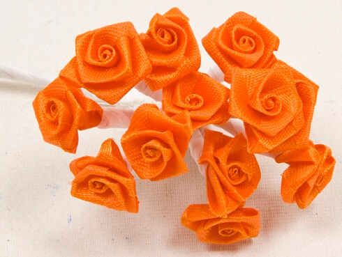 Mini rose orange