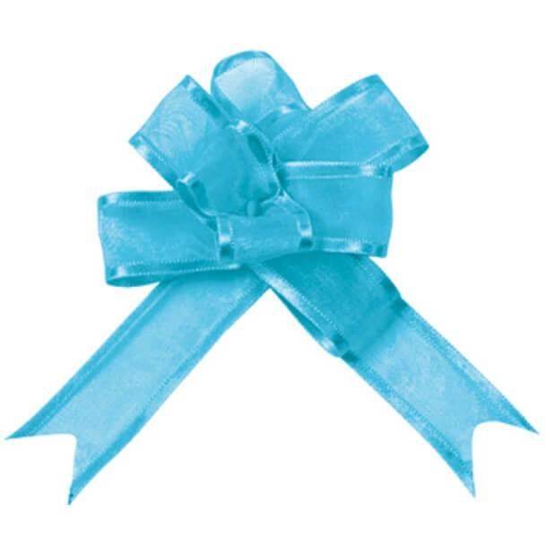 Noeud a tirer automatique organdi bleu turquoise
