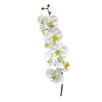 Orchidée blanche 9 fleurs, 85cm (x1) REF/FTG2008