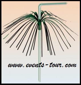 paille-plastique-palmier-feux-d-artifice.png