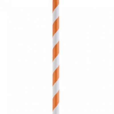 Paille rayures orange (x20) REF/4392