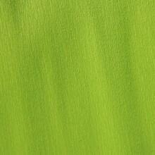 Papier crépon vert printemps 48g - 0.5cm x 2.5m (x1) REF/200002414