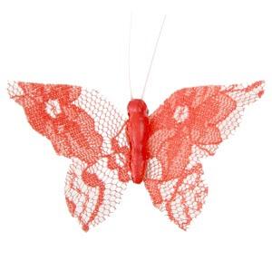 Papillon dentelle corail