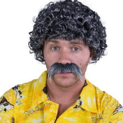 Perruque et moustache Lucien: Gris (x1) REF/81184