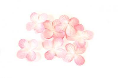 Pétale de fleur rose (x24) REF/DEC800