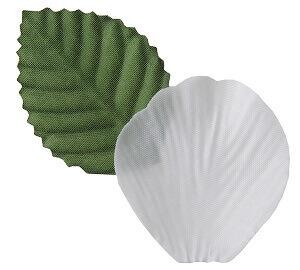 Petale de rose blanc