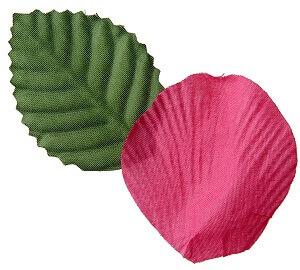 Petale de rose fuchsia