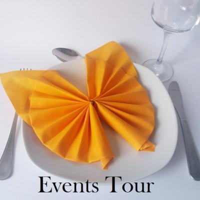 Pliage de serviette Halloween Airlaid chauve-souris orange (x1) REF/10056