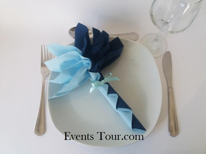 Pliage de serviette palmier bleu ciel et bleu marine