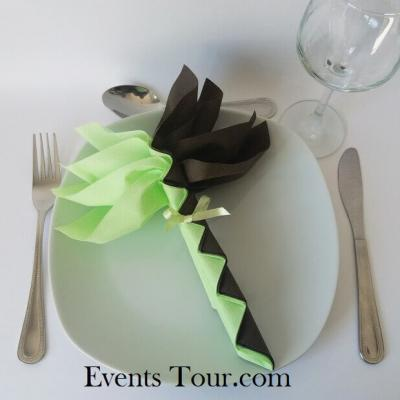 Pliage de serviette palmier vert pomme et chocolat (x1) REF/10048