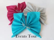 Pliage de serviette: Papillon (x1) REF/10055