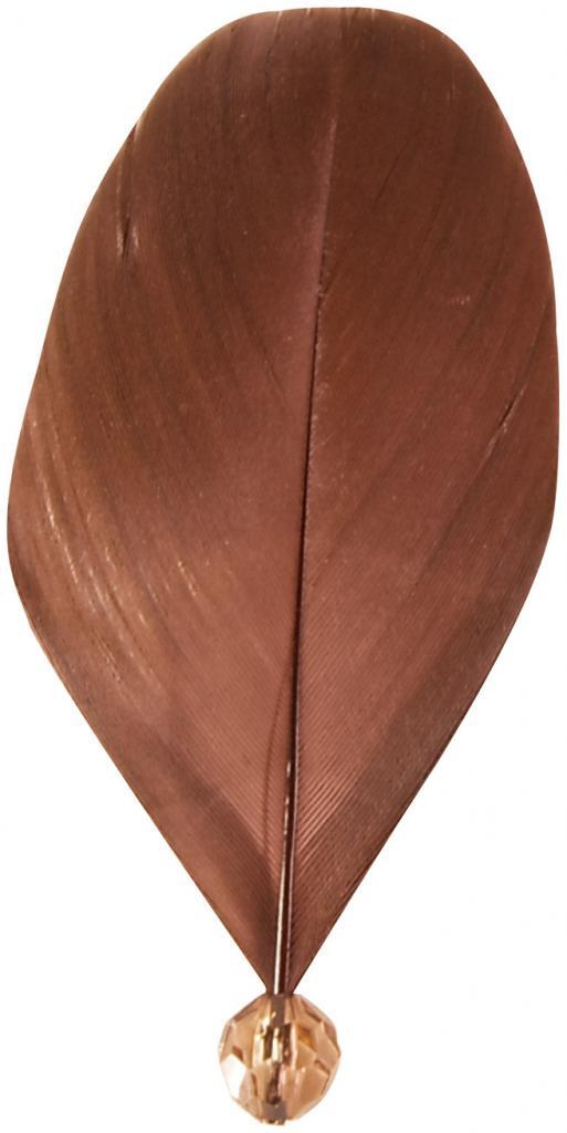 plume-avec-perle-chocolat.jpg