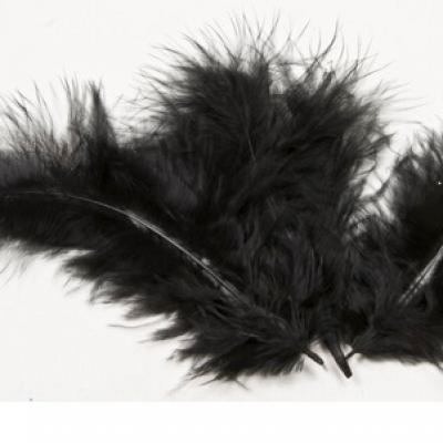 Plume noire (x20) REF/DEC352