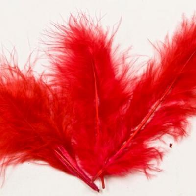 Plume rouge (x20) REF/DEC352