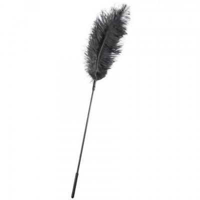 Grand et belle plume sensuelle noire de 26cm (x1) REF/SEXR016