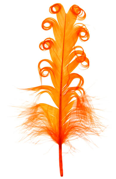 Plume tortillons orange