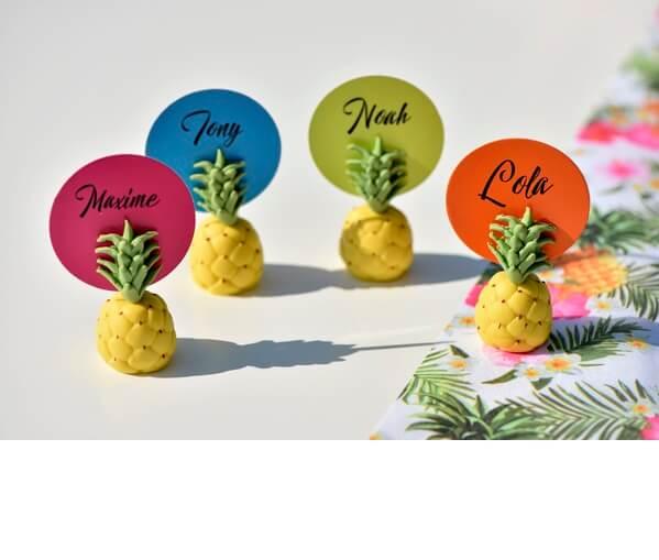 Porte nom ananas