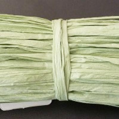 Raphia vert 0.5cm x 30m (x1) REF/VR01/084