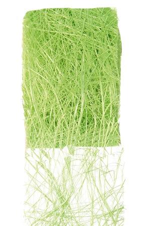 Ruban abaca vert 1