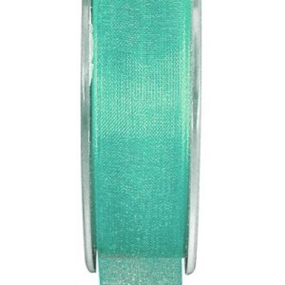 Ruban organdi 25mm mint (x1) REF/2558