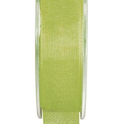 Ruban organdi 7mm vert (x1) REF/2558