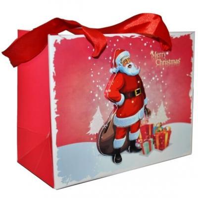 Sac cadeau avec Père Noël en relief 23cm (x1) REF/S72330