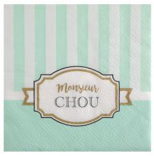 Serviette cocktail verte baby shower (x20) REF/5733